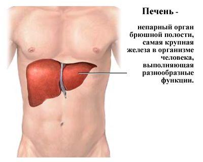 заболевание печени симптомы